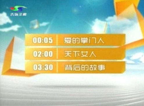 山东卫视2010年新台标上了环图片